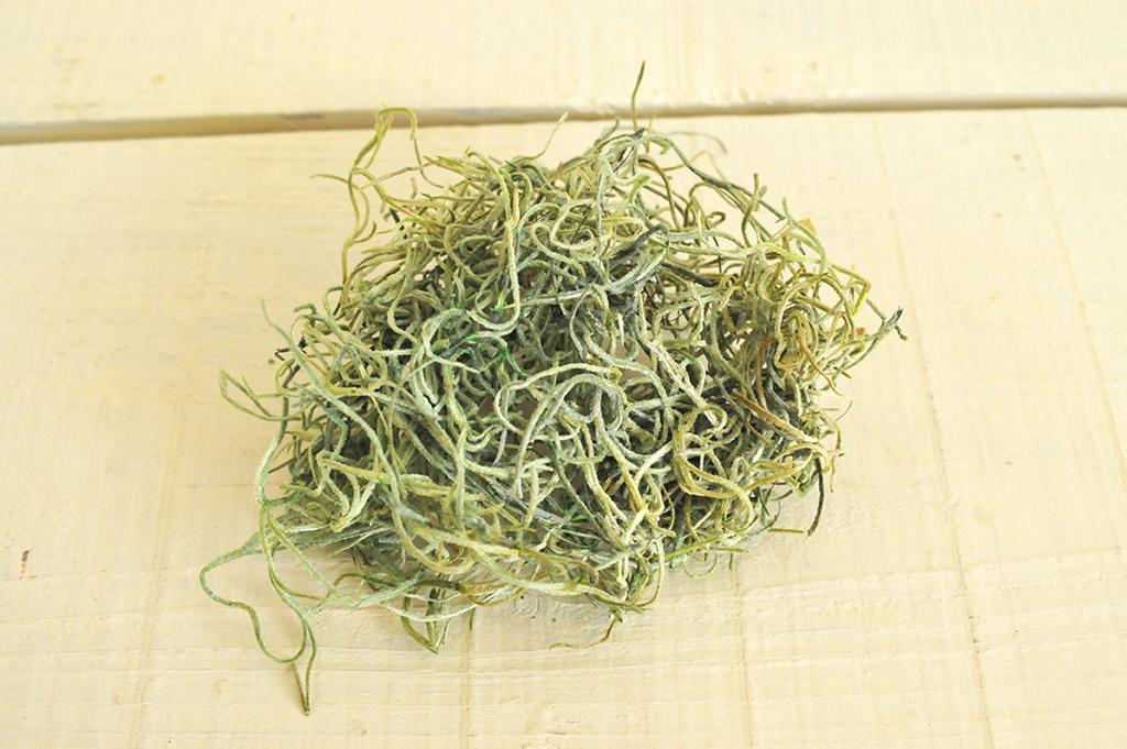 黄緑色の植物を乾燥させたモス