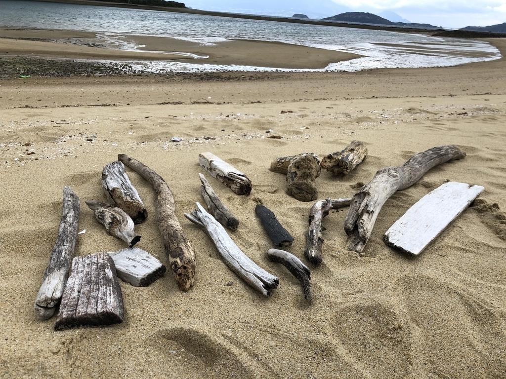 海のゴミや流木をインテリアやDIYに生かす-ふるものせいかつ図鑑