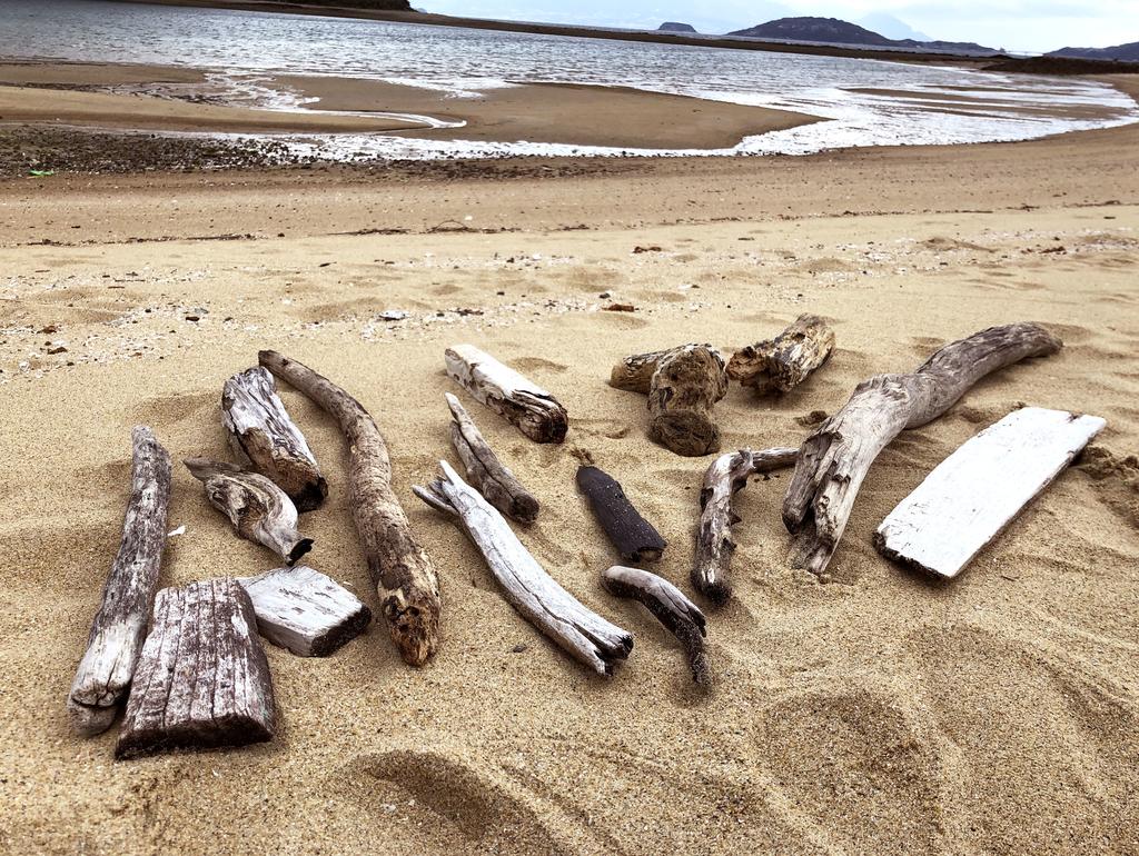 インテリアに大活躍の流木・流木板は拾えばタダ!海辺へ行こう