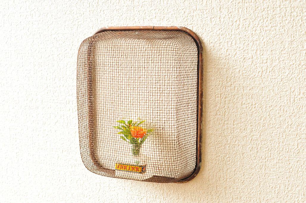 調理器具をリメイク。レトロ瓶と植物で壁掛けインテリア-ふるものせいかつ図鑑